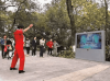 """乌镇蹲点日记丨5G+乌镇人民公园 是""""风""""来的感觉"""